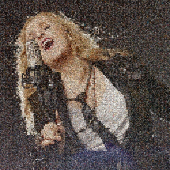 Melissa Etheridge, Artphoto